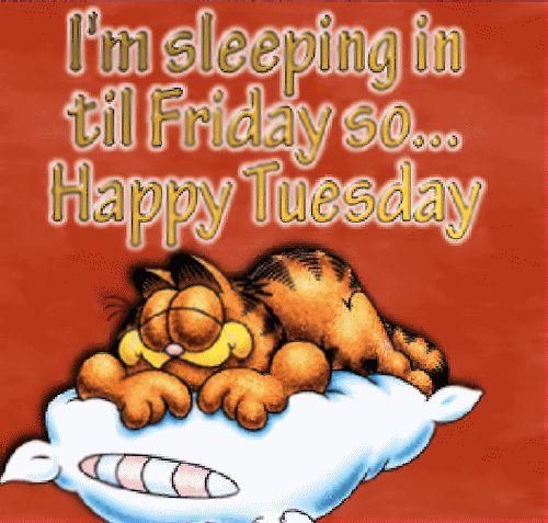 I'm Sleeping In Till Friday, Sooo... Happy Tuesday!!!