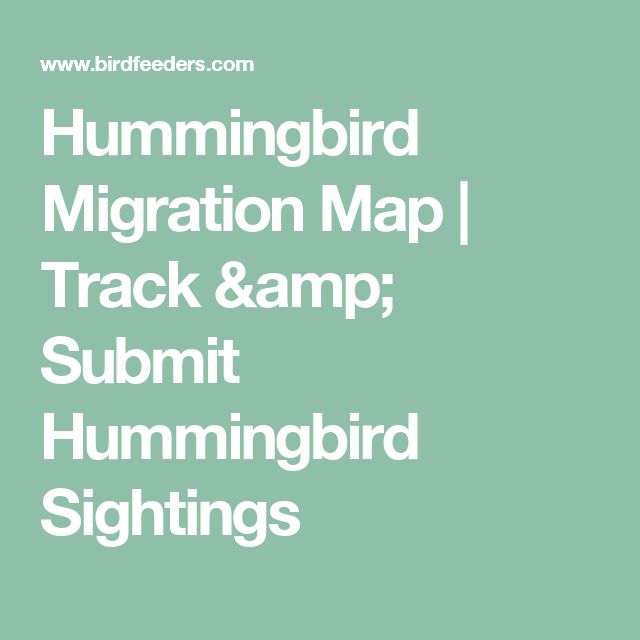 Hummingbird Migration Map | Track & Submit Hummingbird Sightings