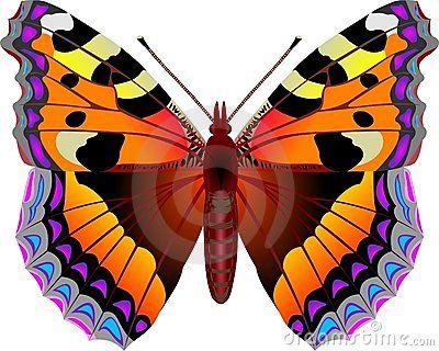 Urticae бабочки aglais
