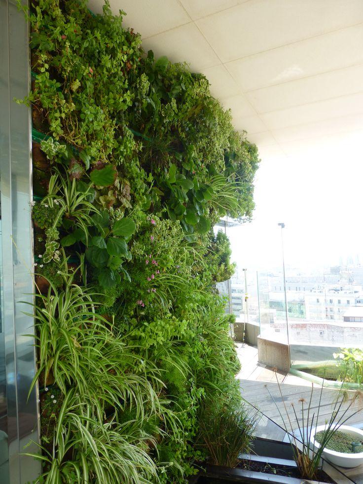 jardin vertical diseo