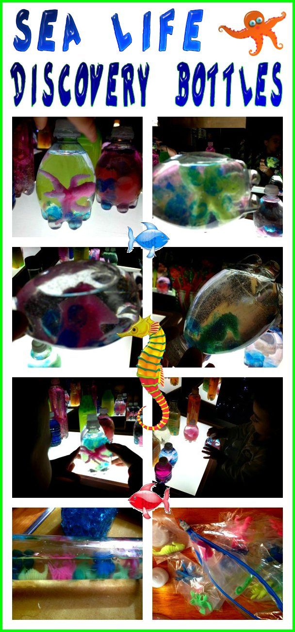 Sea Life Discovery Bottles