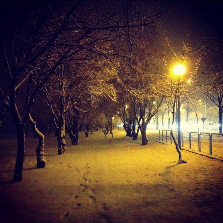 Walking home on a beautiful winter night...