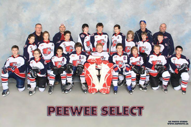 Georgina Blaze 2014/2015 PEEWEE hockey team