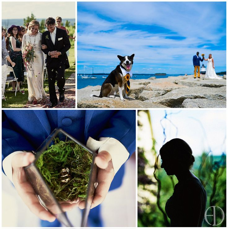 Looking for a wedding photographer with an artistic eye for the traditional moments, but can capture fun candids too? Check out A Doll Photography! https://www.facebook.com/ADollPhotography/