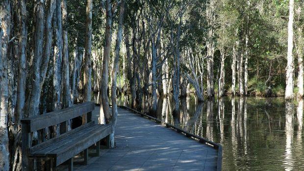 Brisbane 20 best secret spots