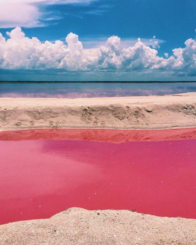 mexique-las-coloradas-lagon-rose-7