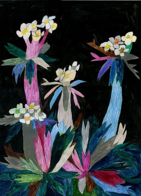 Miroco Machiko   Vibrant Flora and Fauna Paintings  inspiration