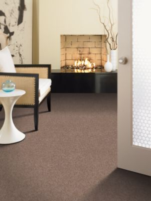 84 Best Carpet Images On Pinterest  Rugs Basement Carpet And Carpet Classy Dining Room Carpet Protector Design Ideas