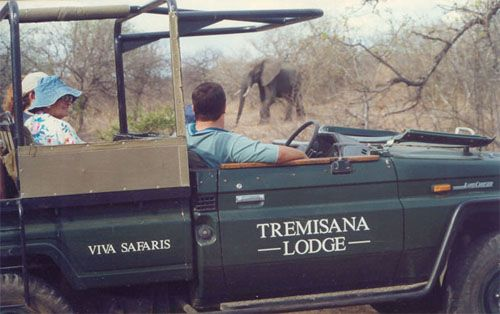TOP PICK: 4 Day Kruger Park Safari staying at Tremisana Game Lodge