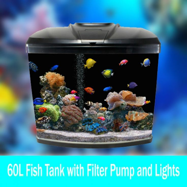 Just In - 60L Aquarium Fish Tank.  Buy Now !! http://www.bigdiscount.com.au/60l-aquarium-fish-tank.html  #fishtank   #aquarium    #bigdiscount