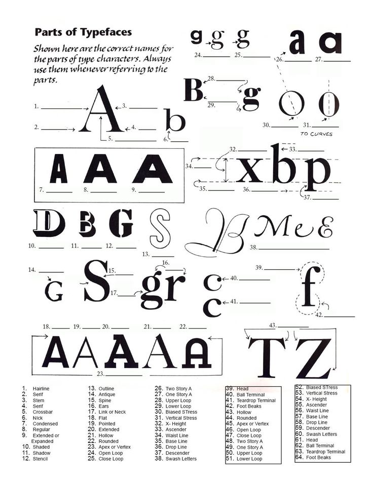 20 Best Typography Images On Pinterest Hand Lettering