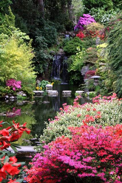 "Compton Acres - Dorset, England - ""This is a place called Compton Acres in Poole, which has themed gardens and this is my particular favorite the Japanese themed garden."""