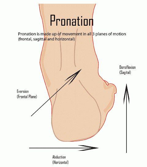 Pronation movement explained