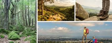 Image result for pictures of roads and paths