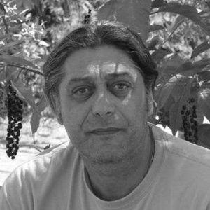 Δημήτρης Γ. Μαγριπλής
