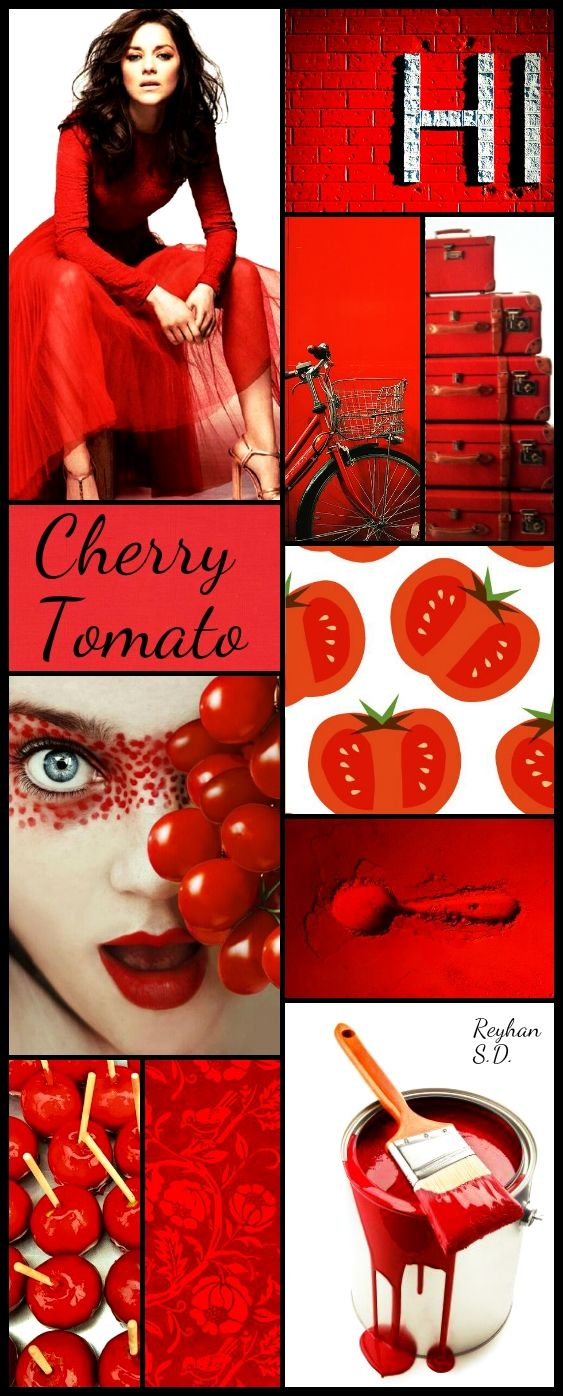 '' Cherry Tomato '' by Reyhan S.D
