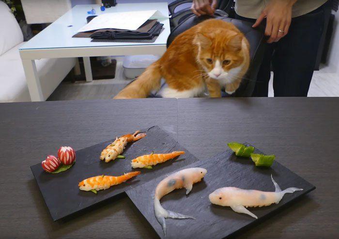Krok po Kroku  Sushi Ktre Wyglda Jak Pywajce Karpie Koi  Interesujace
