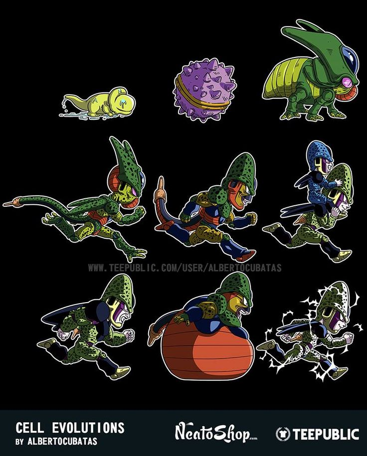 Dragon Ball Z Cell Evolution