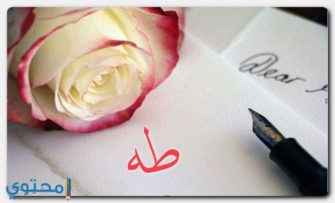 معنى اسم طه وصفات شخصيته Taha معاني الاسماء Taha اسم طه Valentines Day Love Letters Flower Gift Love Letters