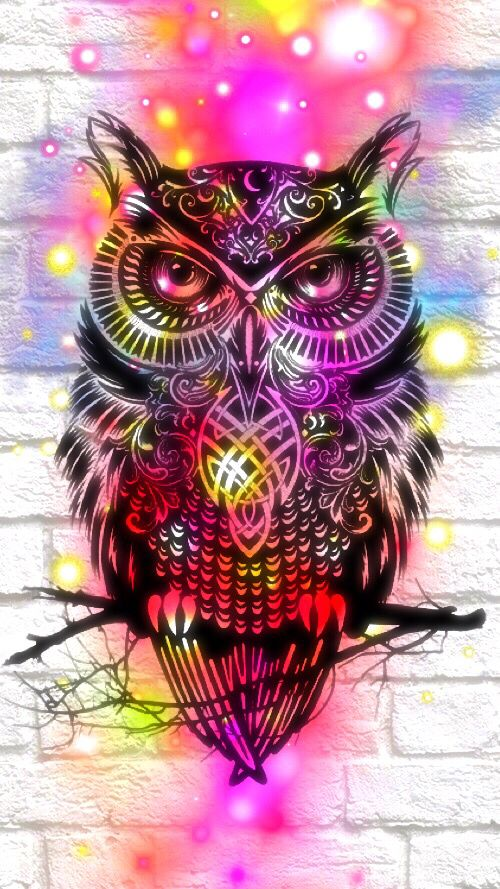 Owl hipster cute                                                                                                                                                                                 More