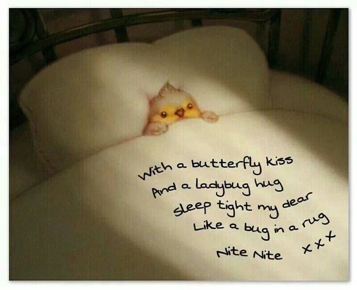1000+ Good Night Quotes on Pinterest | Good night sweet dreams ...