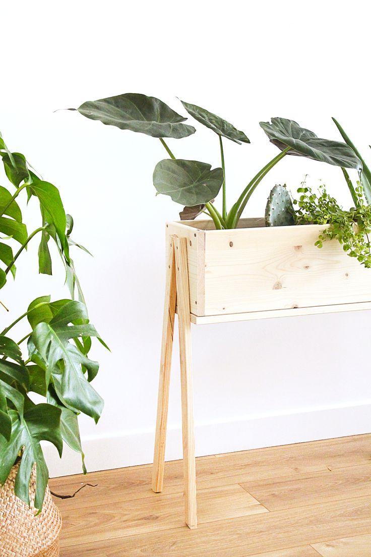 . Je vous propose de construire une jardiniere sur pieds en bois pour rassembler quelques plantes dans votre salon.