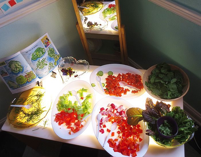 Lovely set up-salad like materials on light table with book and mirror-Palisades Preschool