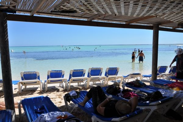 14 best beach bars bonaire images on pinterest beach bars caribbean and beach shack - The dive hut bonaire ...