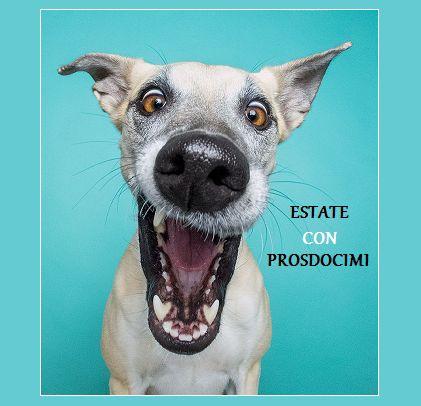 ESTATE CON PROSDOCIMI  Rebus - quiz giochi humor estate con Prosdocimi  QUI>http://tormenti.altervista.org/estate-con-prosdocimi/