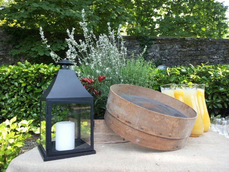 Bouvette e piante aromatiche