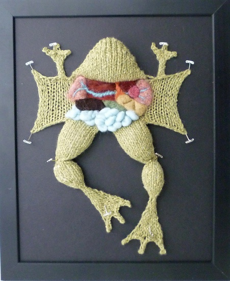 Funny Knitting Pictures : Very funny knitting project pinterest