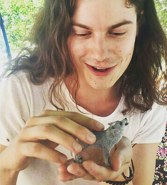 BØRNS Stream of #Dopamine  #lollapalooza2015 What animals? #børns #borns #bornsmusic #garrettborns : #yungwolf1