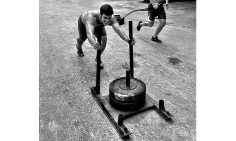 FitnessSanctum.com Commercial Chariot CrossFIt Sled from Fringesport -- $249---- (fitnessssanctum.com...)