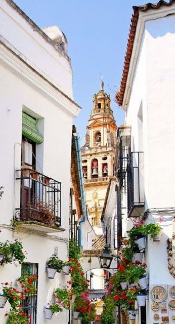 6 Amazing Things To Do In Spain - Travel Daisy