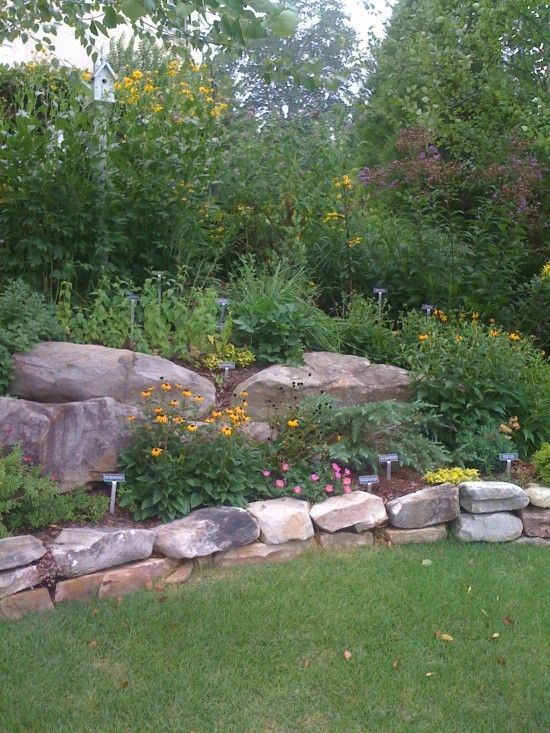 jewelers Love the natural border  this is so nice I will start the garden so that in  years it my look like this