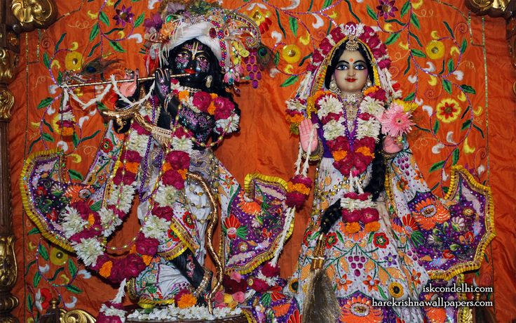 To view Radha Parthasarathi Wallpaper of ISKCON Dellhi in difference sizes visit - http://harekrishnawallpapers.com/sri-sri-radha-parthasarathi-iskcon-delhi-wallpaper-013/