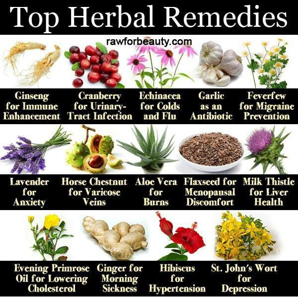 4660 best healing with food and herbs images on pinterest, Skeleton