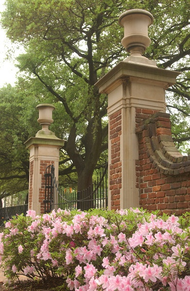 The gates to the historic Horseshoe on University of SC Campus. Founded in 1801, the Horseshoe is listed on the National Register of Historic Places.