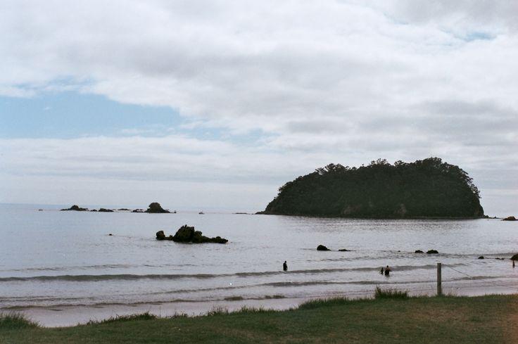 ~tauranga, New Zealand~