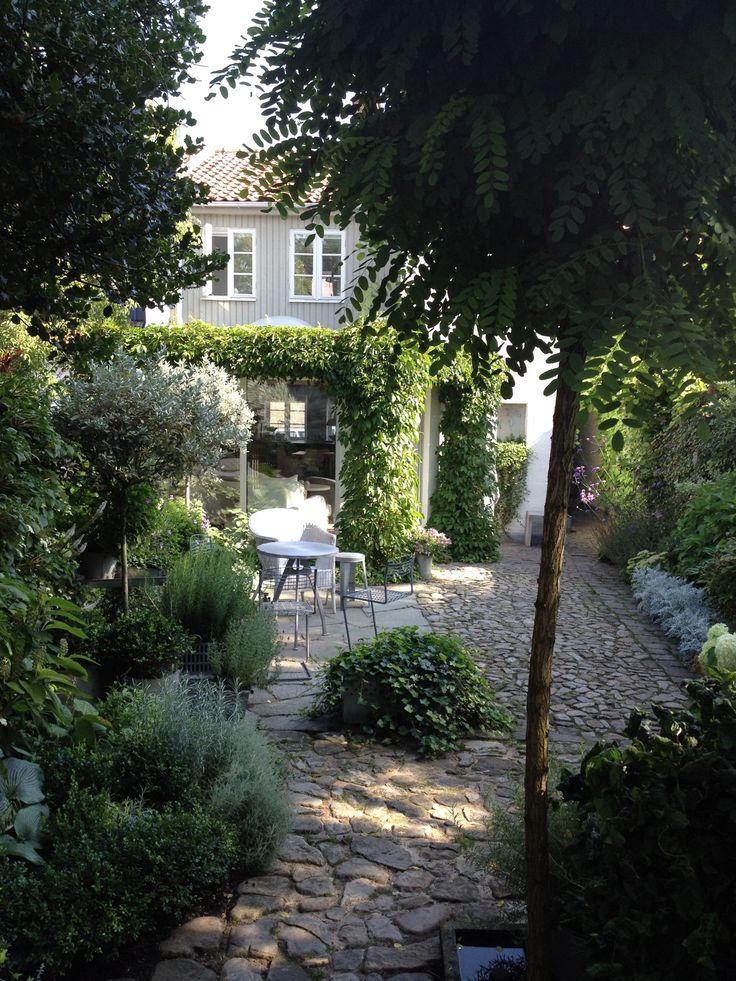 My townhouse garden 14 best Townhouse Backyard