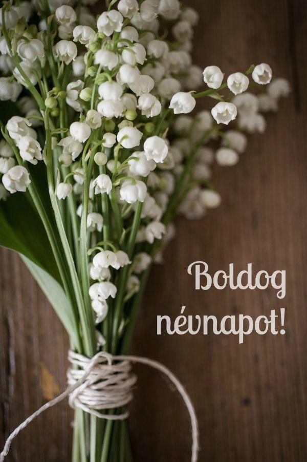 Névnapi képeslap gyöngyvirággal @e5let #nevnap #kepeslap
