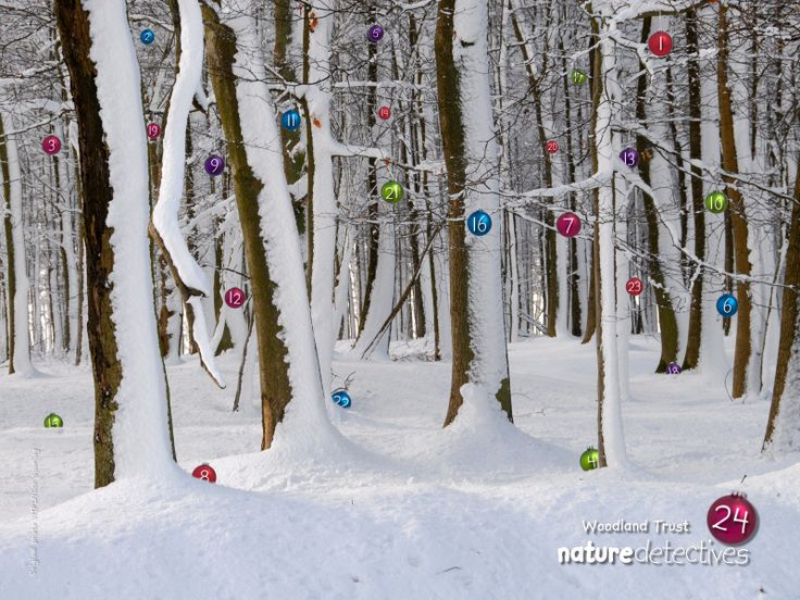 Free advent calender for outdoor and nature ideas.  Cool - you just click on the day and it brings you to an activity.  Nice family ideas
