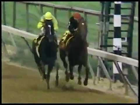 93 best horse racing videos images on pinterest horse racing 1989 preakness stakes sunday silence and easy goer in an amazing stretch run stopboris Gallery