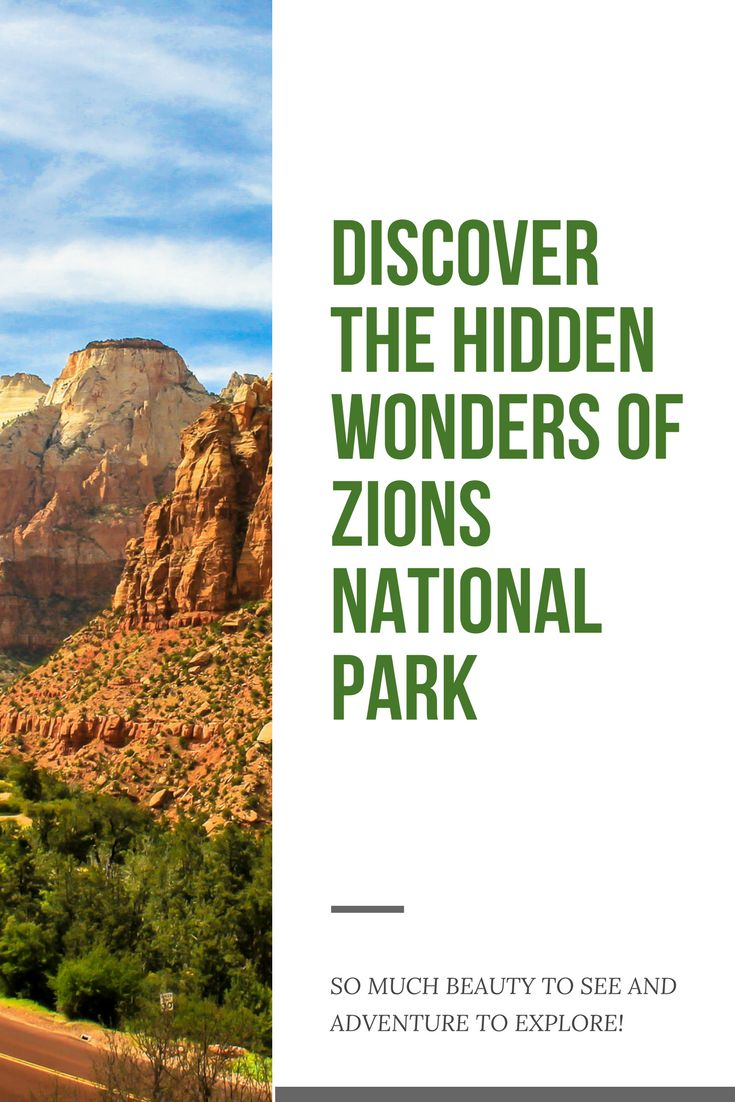 Craving the outdoors? Zions National Park is the perfect place for exploration. This short video takes you through two women who experience water pools, repelling, and discovering the hidden wonders of Zion.
