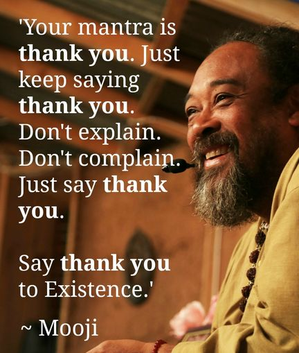 Your Mantra is Thank You - True - don't waste your life neither bickering about yesterday nor in pursuit of happiness tomorrow - be gratefull for living your life today Namaste