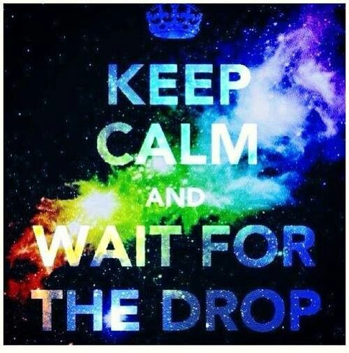 Dubstep! ><< haha when I first saw this I thought it was about New Year's Eve but ya i love dubstep too