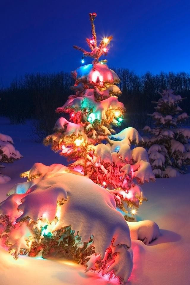 60 best Wallpaper for your cell phone (Christmas Time) images on ...