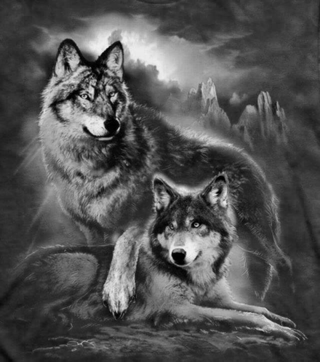 25 Unique Wolf Stencil Ideas On Pinterest Wolf