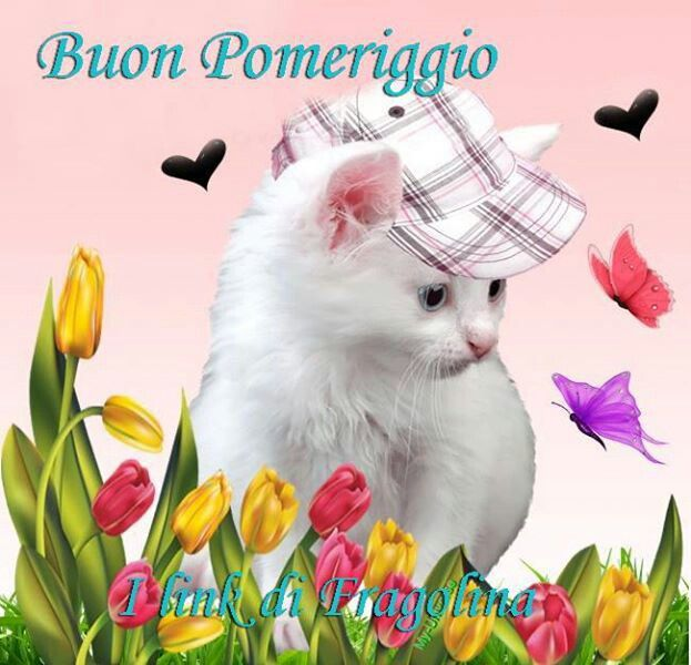 17 best images about buon pomeriggio   on pinterest nice birthday clip art birthday clipart for her