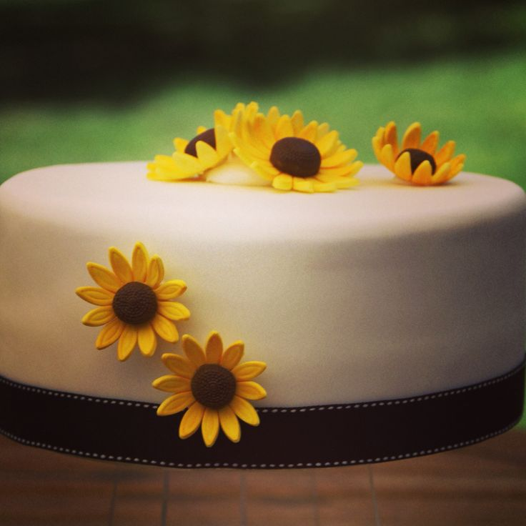 Sunflower celebration cake #sunflower #celebrationcake